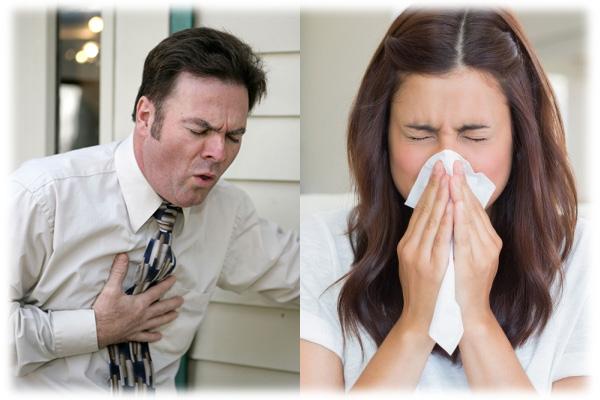 Chest vs Head Cold