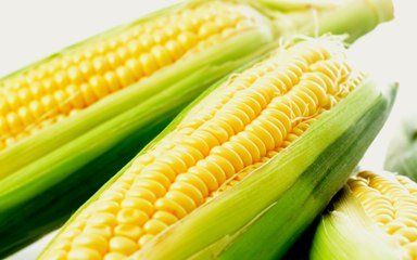 Uptake Fiber Intake with Corn