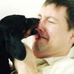 Pets Could Pull Problems For You